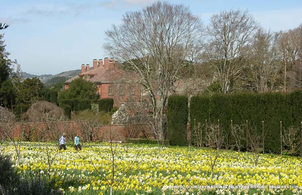 Filoli Garden. Credit: National Trust for Historic Preservation