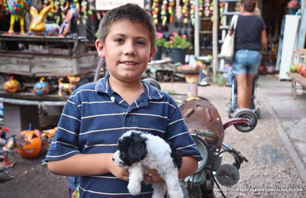 A young Hispanic-American in San Antonio, Texas. Credit: alexdecarvalho, Flickr