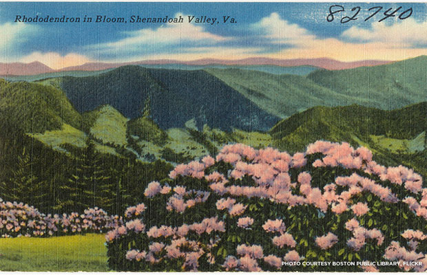The scenic Shenandoah Valley in the spring.