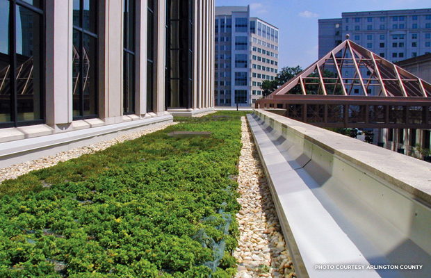 blog_photo_Green Roof_Arlington County