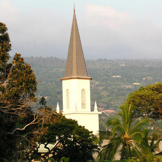 Steeple of Church visible amongst the trees