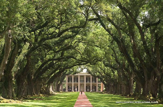 Oak Alley Plantation Host To Vampires And Beyonce National Trust