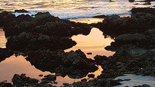 Sunset at Asilomar State Beach (3)