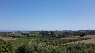 View from Artesa Winery in Sonoma, California