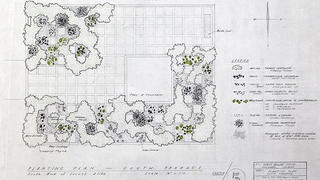 Miller House Master Planting Plan, revised blueline by Daniel Urban Kiley