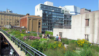 High Line Park in New York City in July 2011