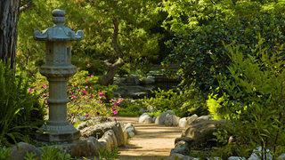 A shot of the Storrier-Stearns Japanese Garden.