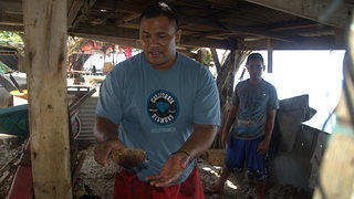 Peter Taliva'a serves up a dish of fresh fish and coconut cooked on an umu.