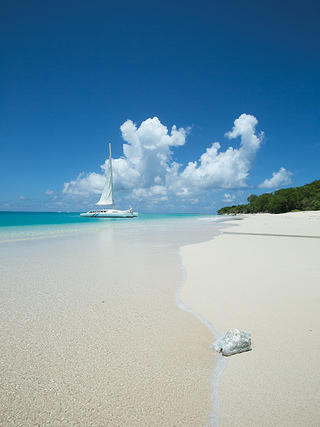 Beach with sailboat in the background