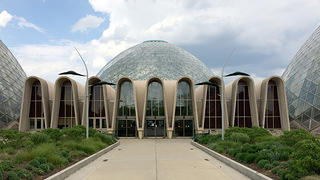 Milwaukee's Mitchell Park Domes