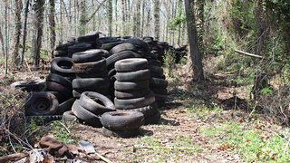 Brink Award Winner Pile of Discarded Tires in East End Cemetery