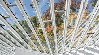 Roof at Sculpture Gallery, Philip Johnson's Glass House