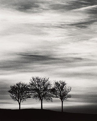 Three Trees at Dusk by Michael Kenna