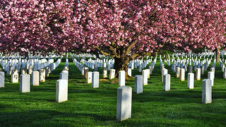 Arlington_National_Cemetery_VA