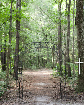 Drayton Hall's African-American cemetery.