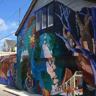 Balmy Alley also includes murals that depict animals, plants, and the natural world.