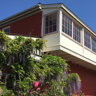 Exterior view of Cooper-Molera Adobe and flowers.