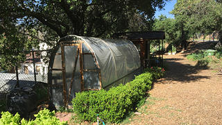 The greenhouse at the Eagle Rockdale Community Garden offers shelter to various plants.