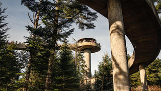 Clingmans Dome from the ground. Photo: Johnny Autry