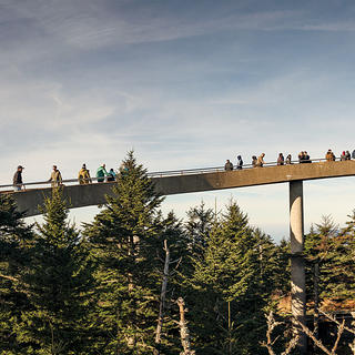 Clingmans Dome just reopened officially after a big repair job. Photo: Johnny Autry