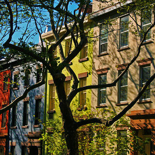 Multicolored townhomes and trees in Brooklyn Heights Historic District, New York.