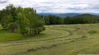 Freshly mowed meadows with forests in background.