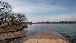 Flooded sidewalks at high tide of Tidal Basin. Partially submerged security gate in the distance.