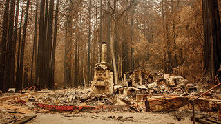 The remnants of the Big Basin Headquarters.