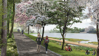GGN's proposal for the Tidal Basin.