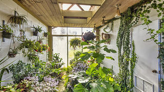 A garden room with plants and an indoor fountain.