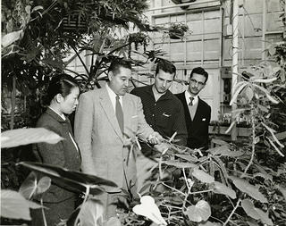 A group of people, three men and one woman, inside a greenhouse. The image is black and white.