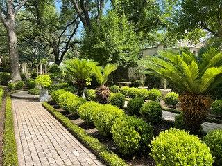 A look at the formal garden in early June where everything is lush and green. There is a brick pathway leading up to a circular area.