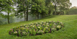 A view of the David Hartt exhibition shows the oval landscaping of flowers with The Glass House in the background. The garden is along a hillside, hugging the land.