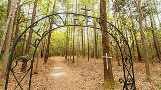 Cemetery for enslaved people at Drayton Hall
