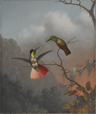 Image of two humming birds along a wooded tree branch. One has a tale with red and pink blues while other is perched, unfurled. They are in the foreground of a painting that has muted greens and greys for the background natural environ and a pale pink and white sky.