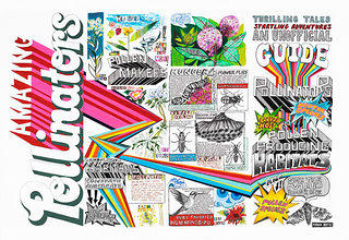 Exterior of a guide that has colorful images of different pollinators in a graphic novel style. There are images of hummingbirds, bugs, and others species that spread pollen throughout the world along with facts about how the process works.