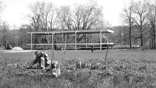 Historical photo of Edith Farnsworth and her dog on the lot with the house under construction behind her.